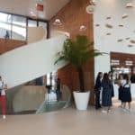 L'escalier en corian qui monte au patio et permet d'accéder aux salons privé, du placage de bananier pour la couleur terre.